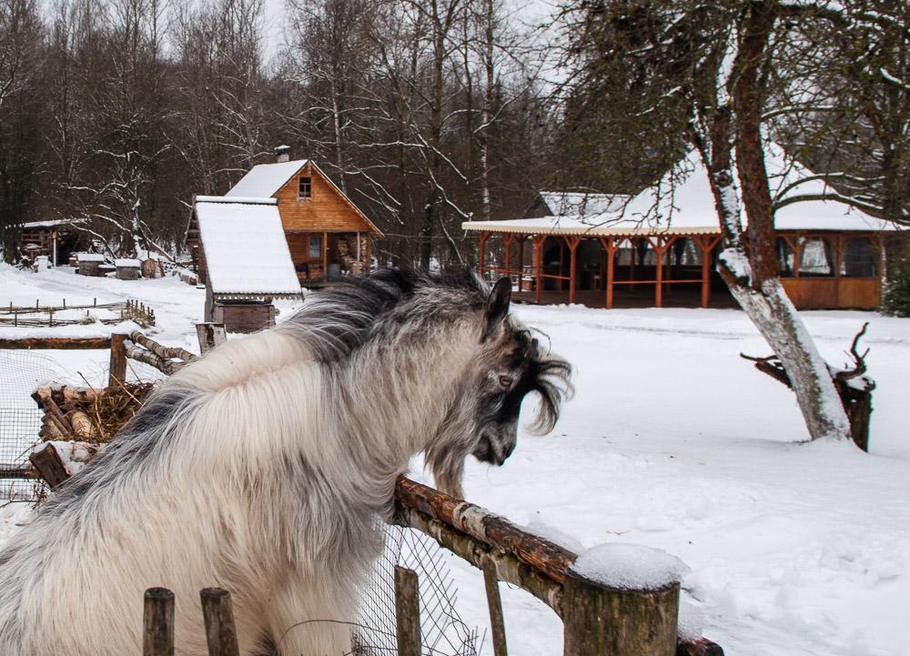 экскурсии выходного дня по беларуси